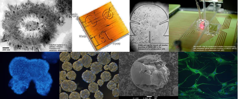 Biomateriais, Nanotecnologia e Medicina regenerativa